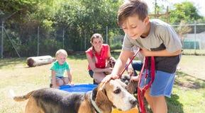年轻男孩爱犬在动物庇护所中 库存图片
