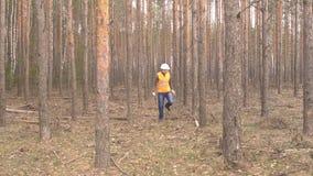 年轻白种人男性林务员在森林损伤和树皮甲虫,森林的有益健康的砍伐里检查树 股票录像