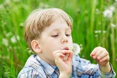 年轻白肤金发的男孩在吹在蒲公英种子的草甸 库存图片