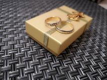 年轻的两只金戒指 免版税库存照片