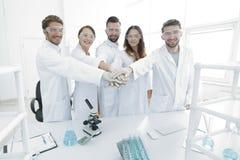 年轻科学家成功的队用一起被扣紧的手 免版税库存照片