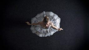 年轻端庄的妇女芭蕾舞女演员剪影芭蕾舞短裙的是steping和spining,芭蕾概念,顶面射击 股票录像