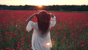 年轻红发妇女投掷头发入在鸦片的花田的空气在日落,慢动作 股票视频