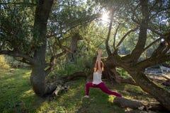 年轻红头发人妇女训练瑜伽在运动服的健身锻炼在阳光下本质上 库存照片