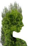 年轻美丽的女孩两次曝光在叶子和树中的 可爱的夫人画象与树的照片结合了 库存照片