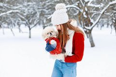 年轻美丽的女孩在一个温暖的冬天给与小狗的戏剧穿衣 库存图片