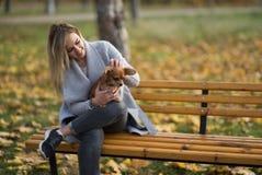 年轻美丽的妇女在有她滑稽的长发奇瓦瓦狗狗的公园 秋天背景特写镜头上色常春藤叶子橙红 库存照片