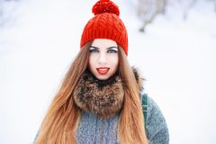 年轻美丽的妇女在sno的背景的一个冬日 库存图片