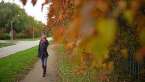 年轻美丽的妇女谈话在她的在黄色和红色叶子背景的手机,当走在秋天时 影视素材