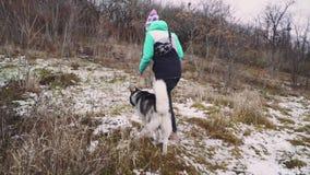 年轻美女走与她多壳的狗在冬天在森林慢动作附近 股票视频