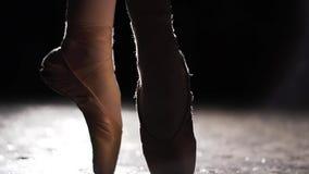 年轻芭蕾舞女演员的美好的腿pointe鞋子的 芭蕾实践 跳芭蕾舞者的美好的亭亭玉立的优美的腿 影视素材