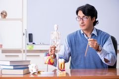 年轻讲师老师教的解剖学 免版税库存图片