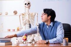 年轻讲师老师教的解剖学 图库摄影