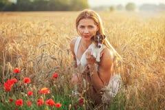 年轻运动妇女,下跪,拿着杰克罗素在她的手上的狗小狗,在前景的某一红色鸦片和日落清淡的麦子 库存图片