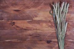 年轻麦子的小尖峰在木背景的 免版税库存照片