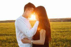 年轻,愉快,爱恋的夫妇,在日落,站立在一个绿色领域,反对天空,在胳膊和看彼此,广告 图库摄影