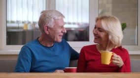 年迈的愉快的夫妇特写镜头射击喝温暖的茶和快乐地谈话户内在一栋舒适公寓 股票视频