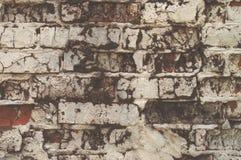 年迈的红砖墙壁纹理绘了与破裂的被风化的结构特写镜头的白色颜色 免版税库存照片