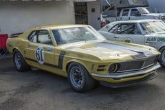 1970年野马赛车 库存照片
