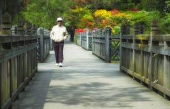年长人在公园走 库存图片