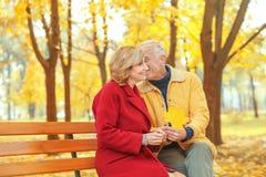 年长夫妇坐长凳 免版税库存照片