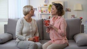 年长妇女和女儿谈话,看拿着茶的照相机,家庭 股票视频