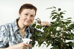 年长妇女纵向  库存图片