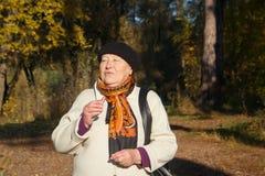 年长资深妇女构成嘴唇在秋天森林,画象里 免版税库存图片