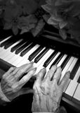 年长钢琴演奏家 库存照片