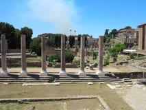 19 06 2017年,罗马,意大利:废墟美丽的景色著名罗马 库存照片