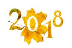 2018年 从黄色槭树叶子雕刻的图 库存图片