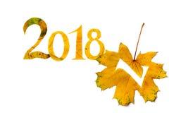 2018年 从黄色槭树雕刻的数字在白色背景离开 免版税库存图片