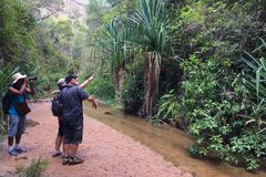 2017年10月:isalo,马达加斯加:远足通过峡谷在伊萨卢国家公园,马达加斯加 库存图片
