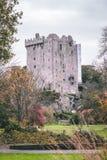 2017年11月17日,奉承,爱尔兰-奉承城堡 库存照片