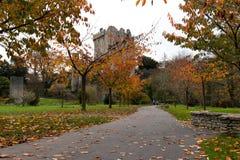 2017年11月17日,奉承,爱尔兰-奉承城堡 库存图片