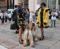 2016年9月22日:两条时兴的女孩和狗在埃米利奥PUCCI时装表演,米兰时尚星期春天/夏天以后2017年 免版税库存照片