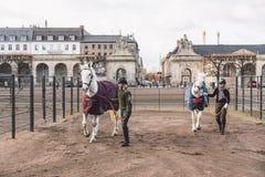 2019年2月20日 丹麦 哥本哈根 一匹马的训练旁路适应在城堡克里斯蒂安堡的皇家槽枥 图库摄影