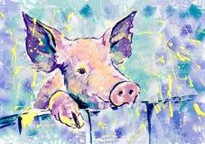 幸福桃红色猪 免版税库存图片
