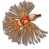 幸福玩偶护身符鸟由被隔绝的黄麻麻线和色的毛线制成在白色背景 E 库存例证