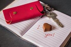 幸福钥匙 将来的系列 爱 免版税库存照片