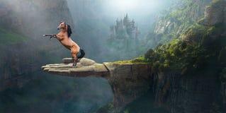 幻想野马,想象力,自然,超现实 库存照片