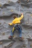 幼体上升的岩石墙壁 免版税库存图片