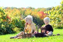幼儿有果子野餐在苹果树 免版税图库摄影
