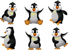 幼小企鹅集合字符 图库摄影