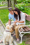 幼小夫妇培训狗在公园 免版税库存照片
