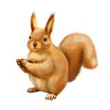 幼小灰鼠用食物在她的手上 免版税库存照片