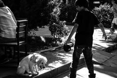 幼小男孩和小狗 免版税库存图片