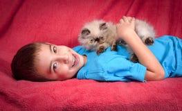 幼小蓝蚝喜马拉雅波斯小猫和逗人喜爱的男孩 免版税库存图片