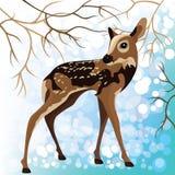 幼小鹿在冬天森林里,向量例证 免版税库存图片