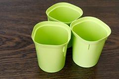 幼木的三个空的塑料杯子 花艺项目 库存照片